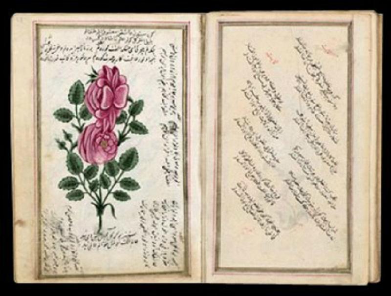 Divan Edebiyatı Şiiri Biçim Ve İçerik Özellikleri Osmanlı Divan Edebiyatı El Kitabı Şiirleri Eserleri Şairleri Edebi Kişileri Tarihi
